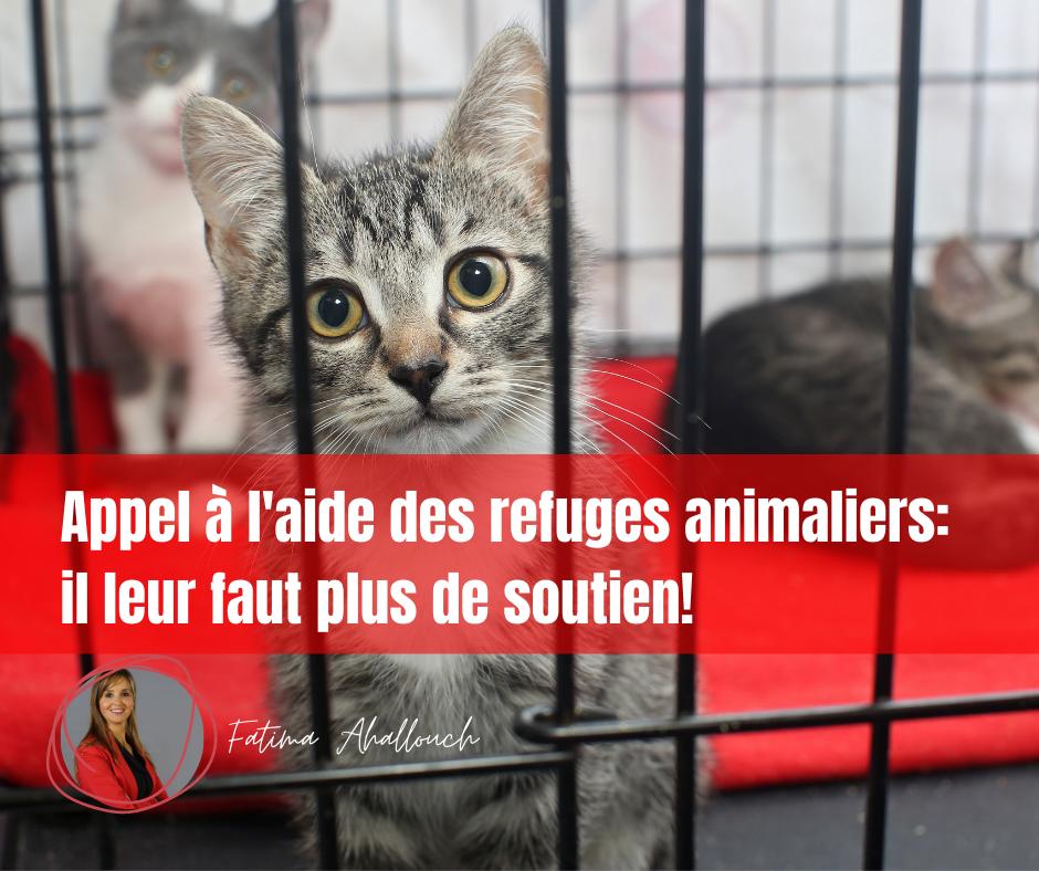 Soutien aux refuges animaliers